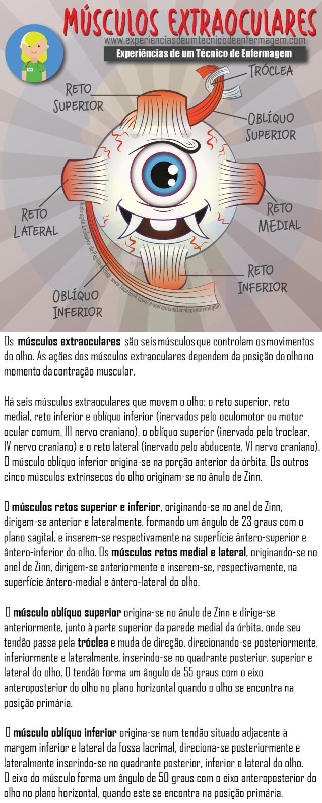 musculoolhos.png