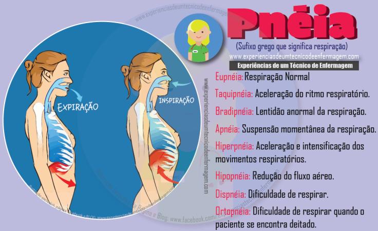 pneia.png
